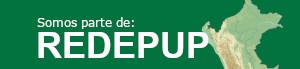 Red Peruanade Escuelas de Posgrado de las Universidades Públicas REDEPUP